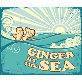 Alice In Vapeland - Ginger By the Sea 120ML